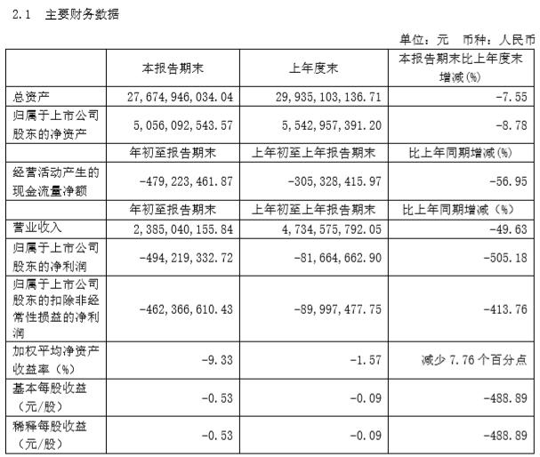 小康股份2020年一季报出炉:亏损4.94亿元
