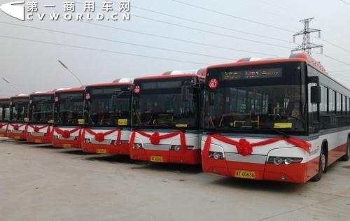 20辆宇通cng公交车服务衡水马拉松赛