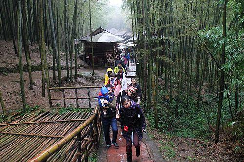 成都宝悦 蜀南竹海西部大峡谷自驾游之旅